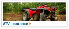Geico Insurance Cancel
